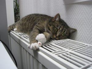 Commentse faire l'installation d'une pompe à chaleur ?